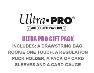 VIP Package gift pack 1 - Tickets